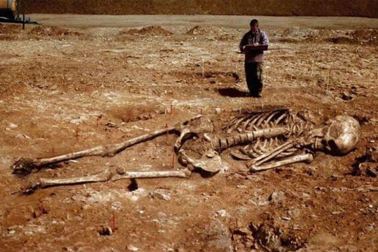 giant_skeleton-5909f5ac3df78c9283e35f4b